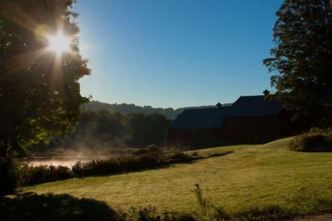 Sunrisefarm10